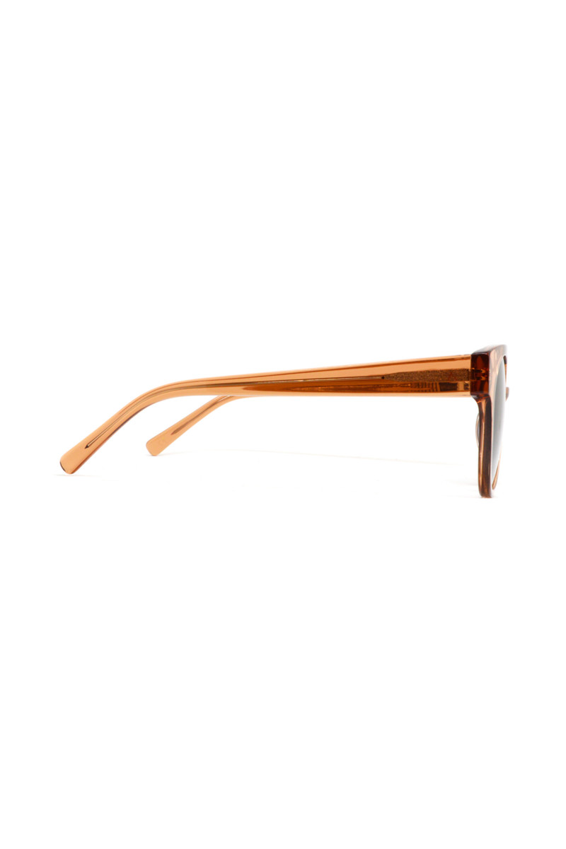 Gafas Vector 2.O Brown  portada